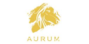 300x150px-logo-aurum